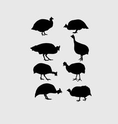 Guinea Fowl Silhouettes vector