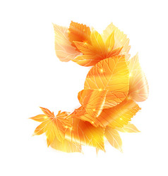scattered golden leaves vector image