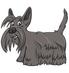 Scottish terrier purebred dog cartoon vector
