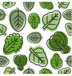 seamless pattern of vegetable leaves such as kale vector image