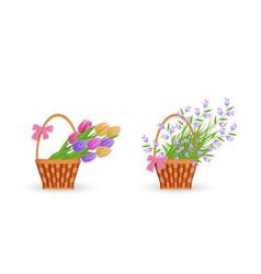 Spring floral bouquets in wicker basket set vector