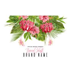 Tropical flower banner vector