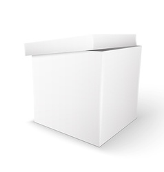 white Package Box vector image vector image