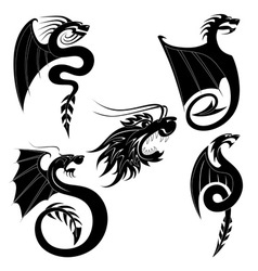 black dragons tattoo vector image