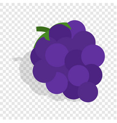 bunch of blue grapes isometric icon vector image