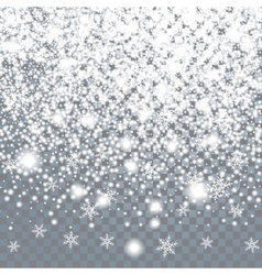 Falling large snow on a transparent background vector image