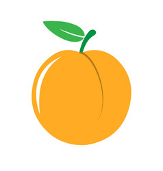garden peach icon vector image