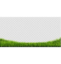 grass border big set vector image