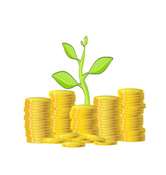 green plant and gold money coins over white vector image