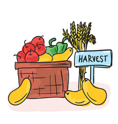 harvest - basket with fruits and vegetables vector image
