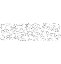 set animals in hand drawn minimalism style vector image