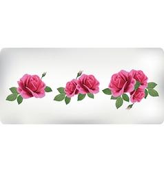 Set bouquets roses vector