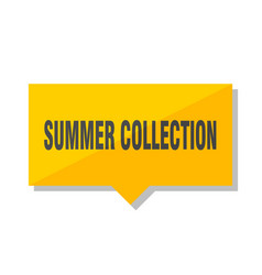 summer collection price tag vector image