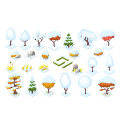 winter season trees and bush fence stones vector image