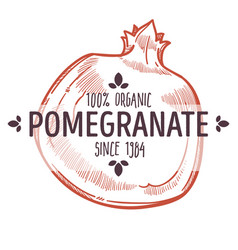 100 percent organic pomegranate label with whole vector image