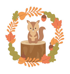cute squirrel in trunk with leaves forest vector image