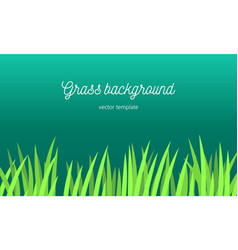 Grass background tamplate vector