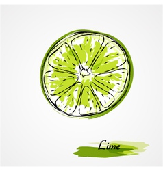 lime fruit slice vector image