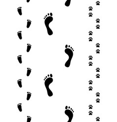 Prints feet and paws vector
