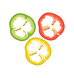 Sliced bell pepper red green and yellow vector