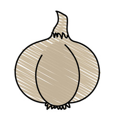 spicy garlic vegetable vector image
