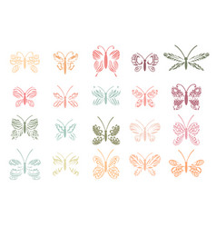 beautiful tropical butterflies set vector image