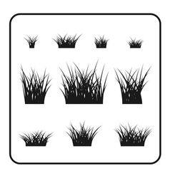 Grass bushes set plant vector image