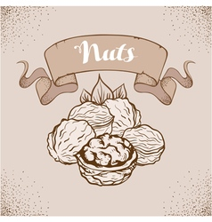 Hand drawn sketch nuts vector image