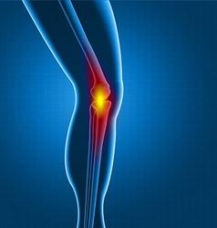 Kneee pain vector