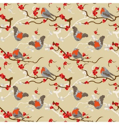 Robin redbreast pattern vector