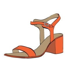 Summer womens high-heeled sandals vector