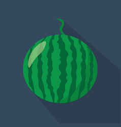 watermelon cartoon flat icondark blue background vector image