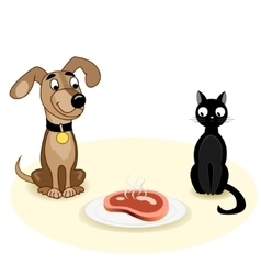 Dog and cat near meat vector image vector image