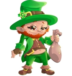 beautiful leprechaun on white background vector image vector image