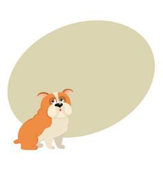 cute english bulldog dog character isolated vector image vector image