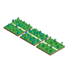 Isometric view projection summer landscape vector