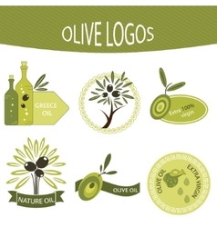 Set of olive oil logos labels badges vector image vector image