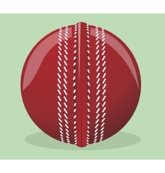 Ball for cricket vector image