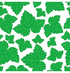 Curran leaves pattern vector