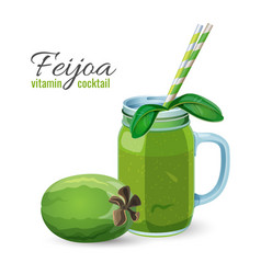 feijoa fresh fruit cocktail in glass jar vector image