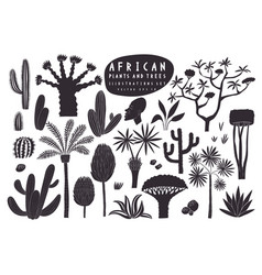 fun hand drawn african plants set cactuses palms vector image