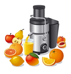 electric juicer and fruits vector image vector image