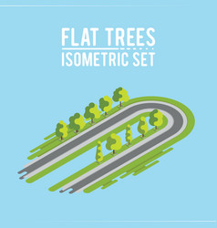 trees isometric big and small trees park vector image