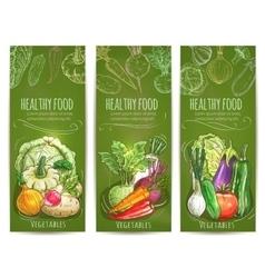 Vegetables healthy vegetarian food sketch banners vector image vector image