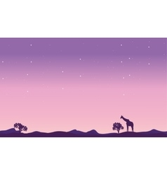 Giraffe landscape at night silhouette vector image vector image