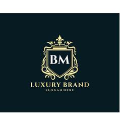 Bm initial letter gold calligraphic feminine vector