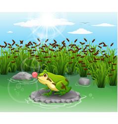 Cute frog beautiful scenery vector