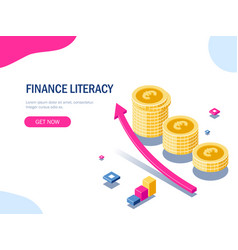 Finance literacy isometric concept euro stack of vector