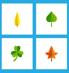 Icon flat maple set of aspen oaken leafage and vector