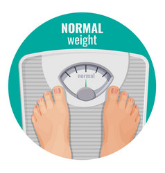 Normal weight human feet on scales isolated on vector